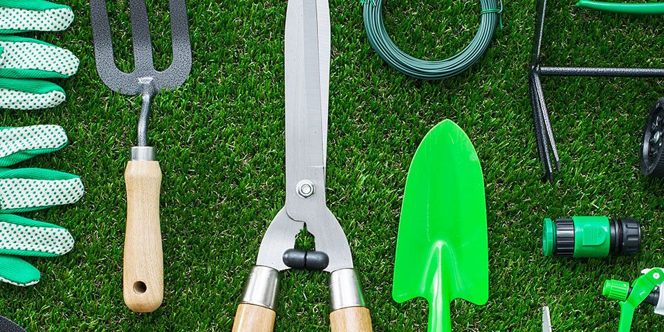 Guide to Gardening: A Beginner's Toolbox